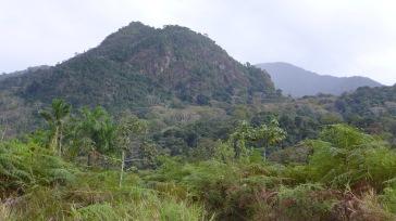 Serra do Padeiro