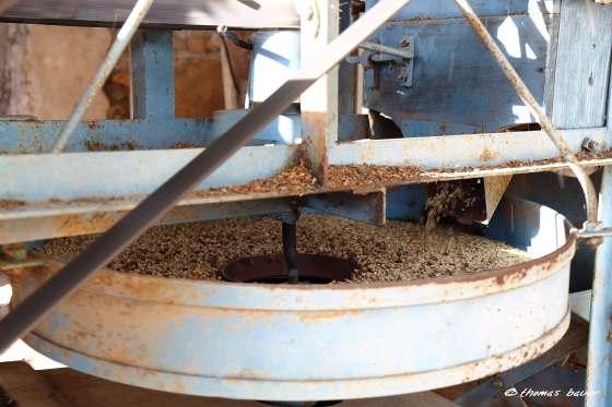 5_descascando-café