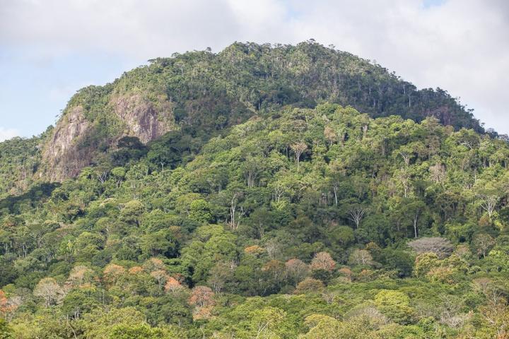 Serra do Padeiro_Tupinambá de Olivença_Bahia_TBauer (1 de 1)